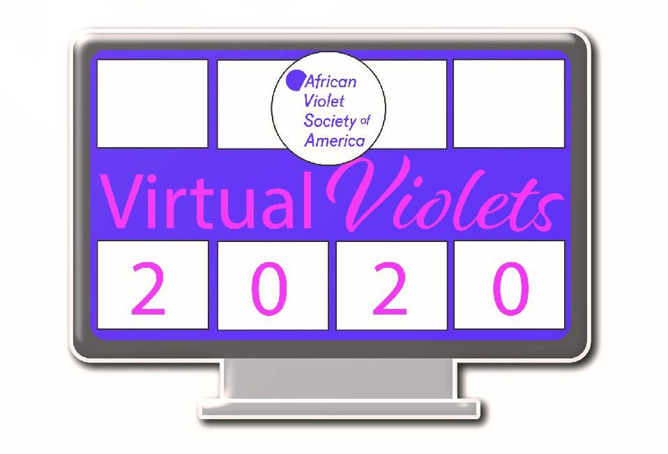 Virtual Violets Convention Souvenir Pin