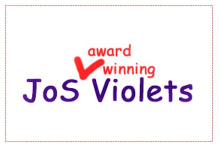 JoS Violets